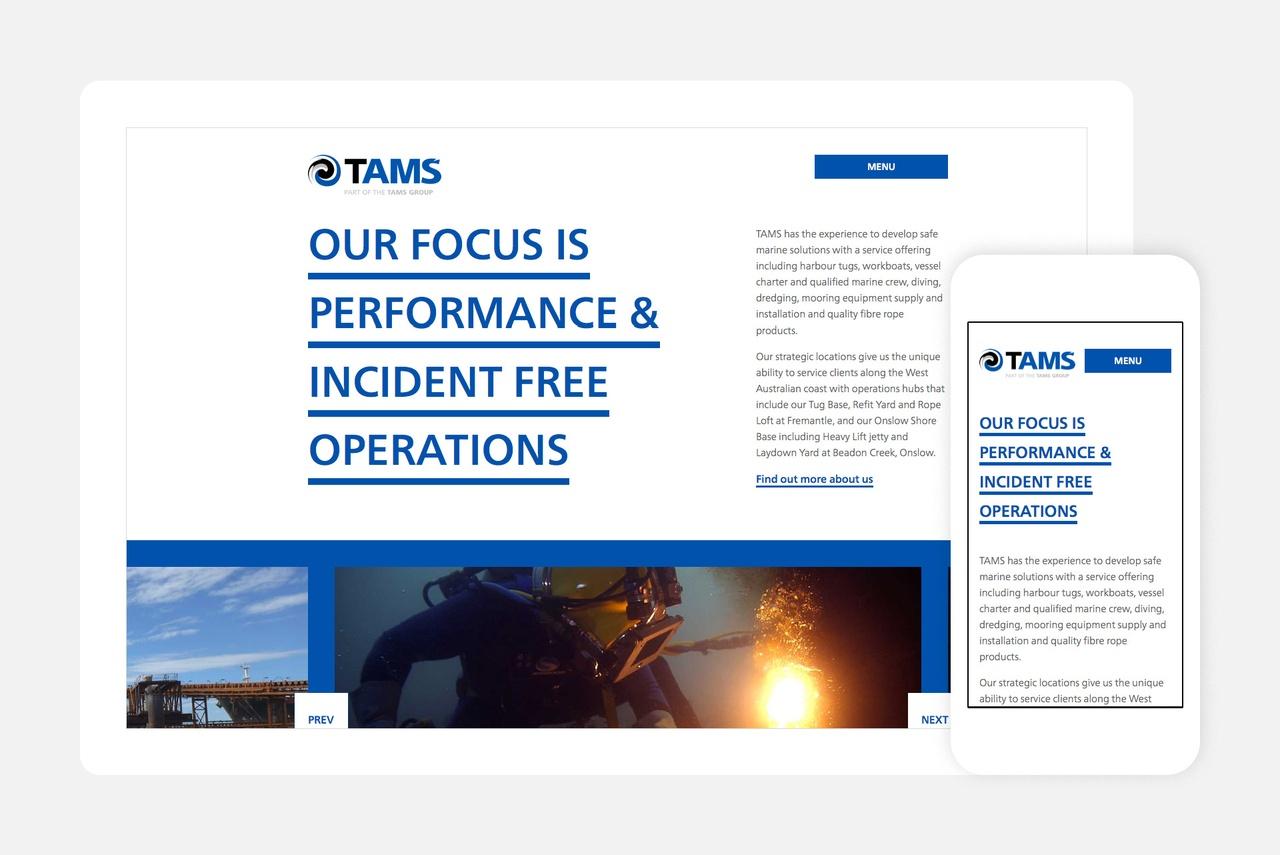 Website - Homepage Detail