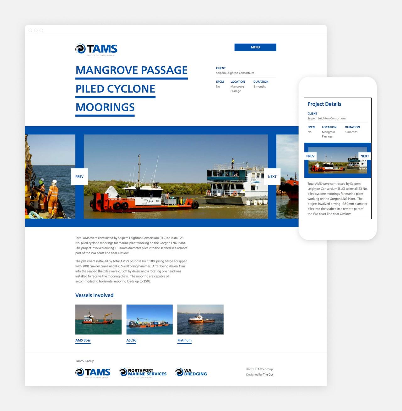 Website - Project Detail